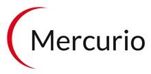Mercurio Publicidad - Marketing Político - Opinión Pública